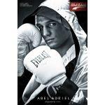 Γάντια προπόνησης πυγμαχίας Pro Style Training Gloves White